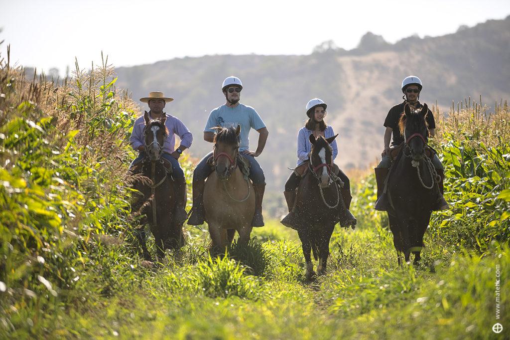 Matetoc-Horseback-riding-corn-1024x682
